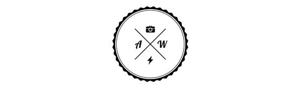 Alexander Wieselthaler logo